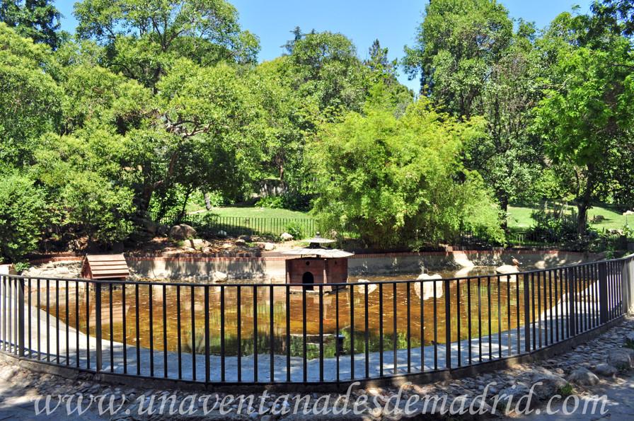 El retiro jard n de vivaces for Estanque para patos jardin